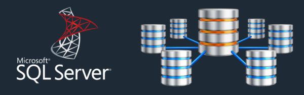 Success story : récupération sur base de données SQL Server de grande capacité !